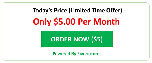 Order on Fiverr at just $5 for 1 month